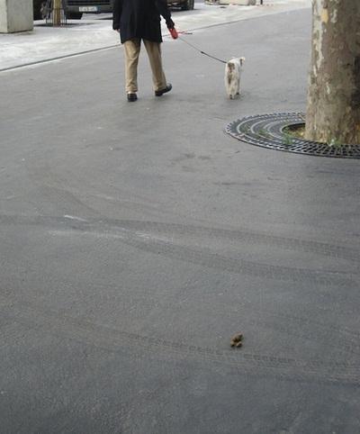 paris-dog-poo