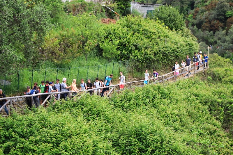 Hiking trail, things to do in cinque terre, cinque terre villages