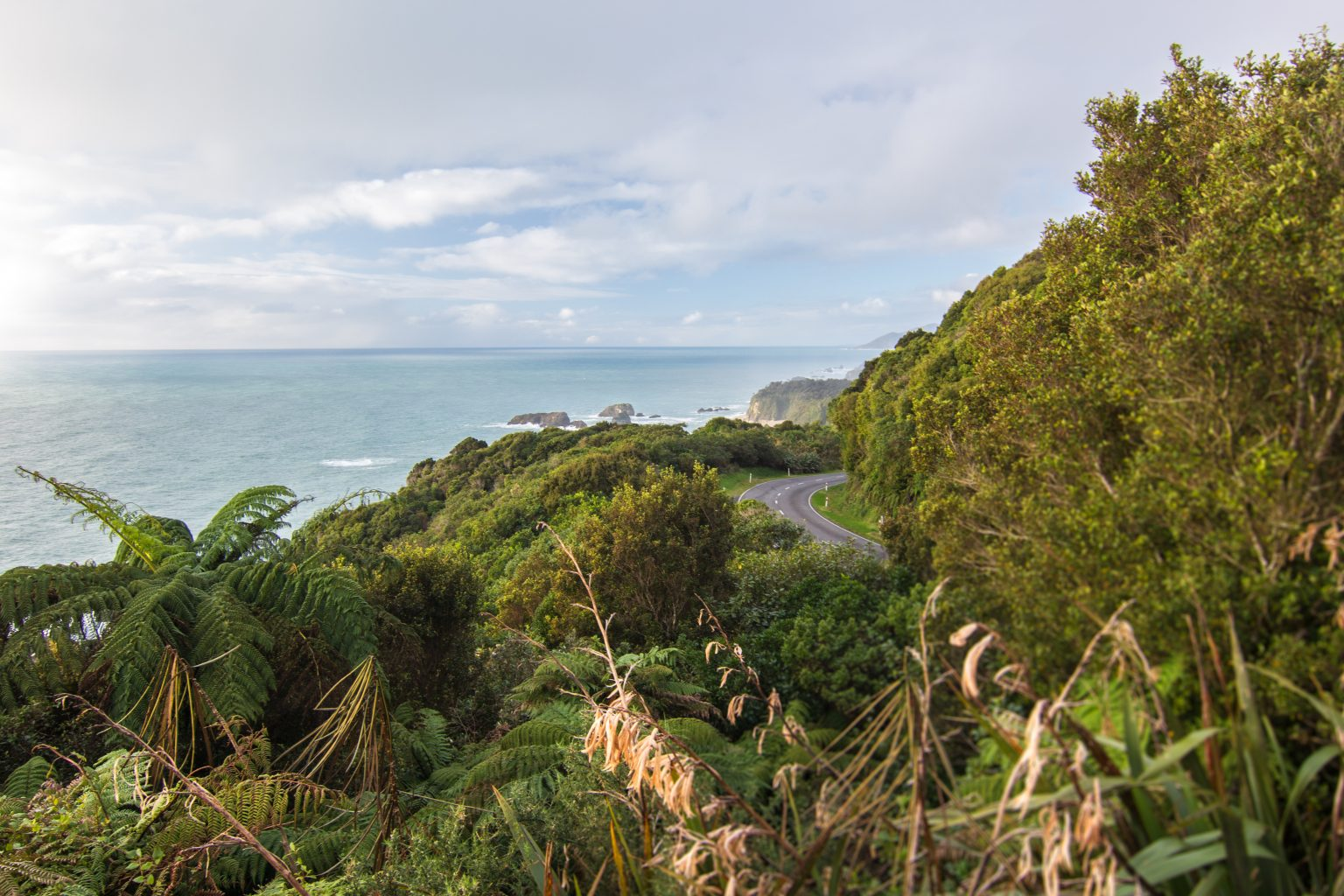 New Zealand Road trip, driving in new zealand