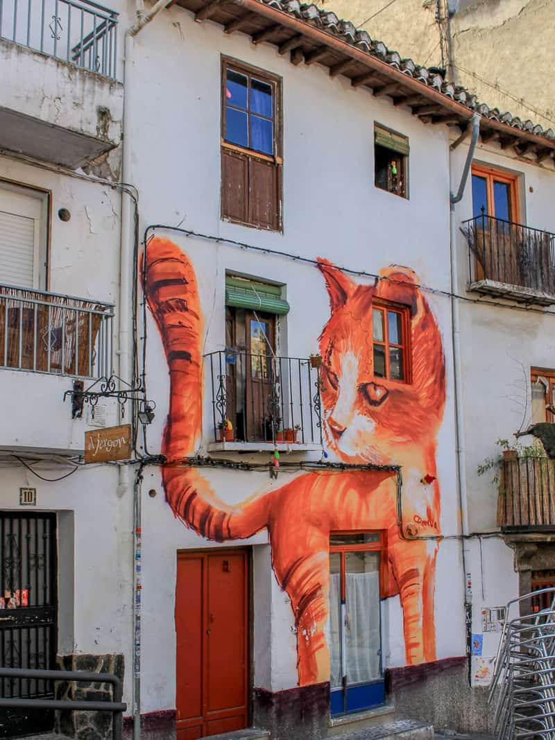 Albaycin Albayzin WInding Alleyway Interesting House Cat Painted Wall Granada Spain Europe History Old Town