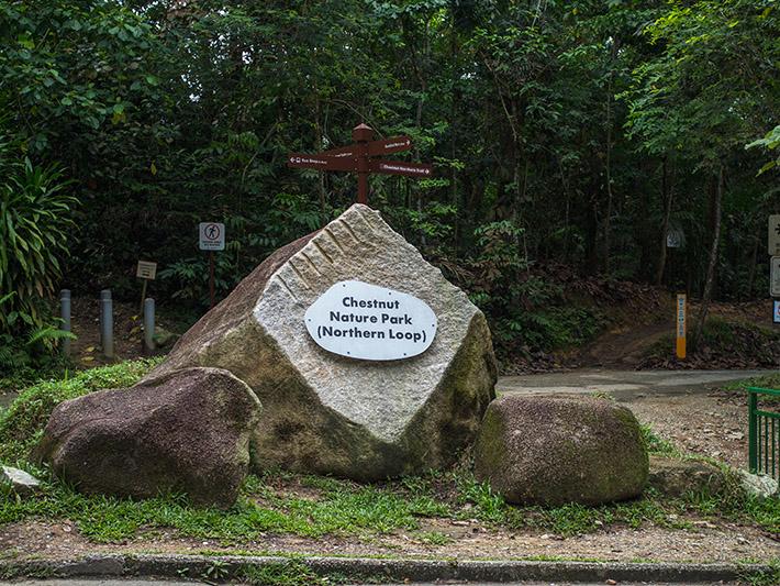 Chestnut-Nature-Park-northern-loop