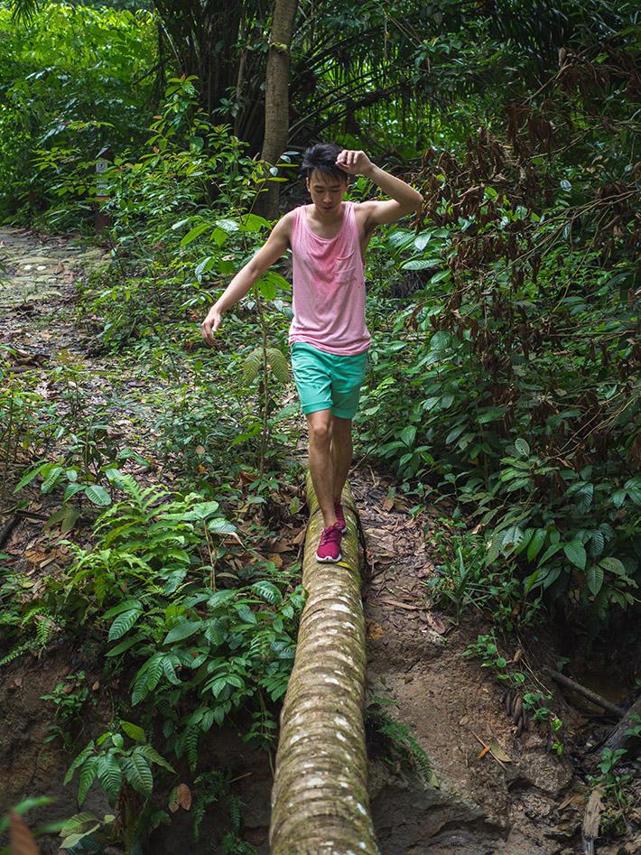Chestnut-Nature-Park-singapore