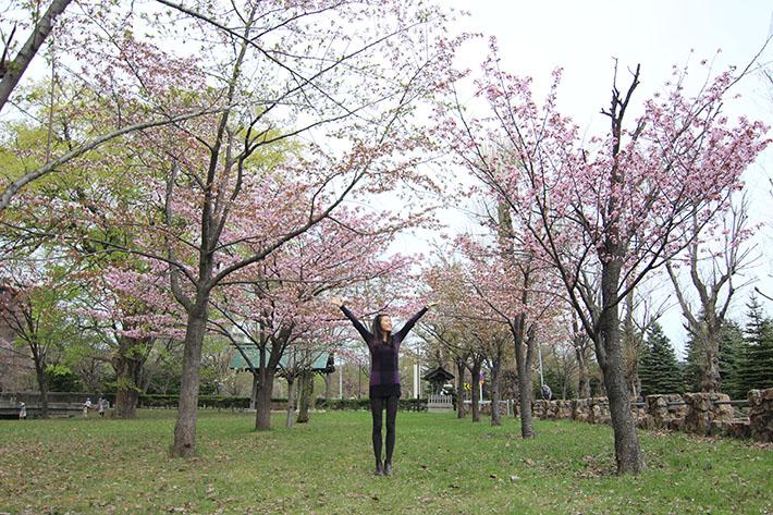 Nakajima Park cherry blossom sakura sapporo hokkaido