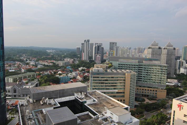 Oasia Hotel Novena view