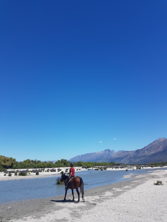 horse riding glenorchy Dart River Stables new zealand queenstown