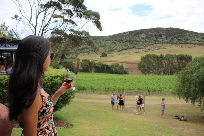 Hearty Wine Tours to Embark on in Waiheke Island, New Zealand