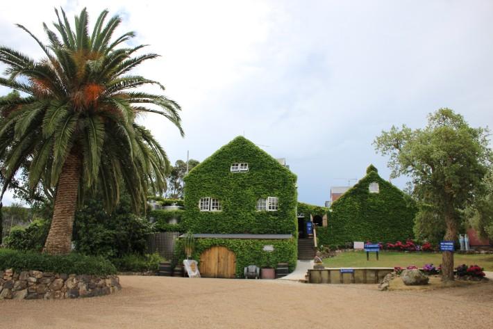 waiheke new zealand winery