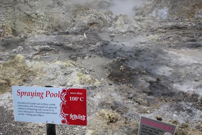 Spraying Pool, Hell's Gate Geothermal Park Mud Spa, Rotorua, New Zealand