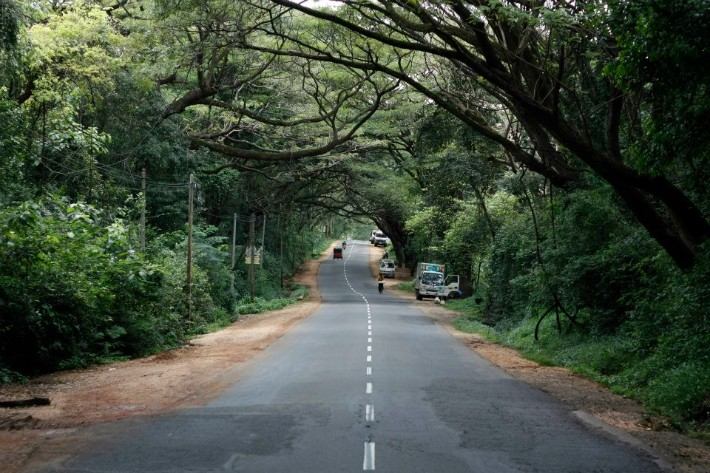 SRI LANKA ROAD itinerary