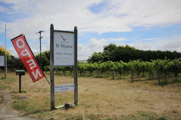 Te Mānia Wines, Great Taste Trail Nelson, New Zealand