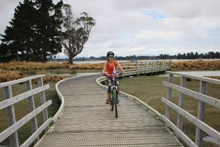 nelson great taste trail cycling wine tour, Great Taste Trail Nelson, New Zealand