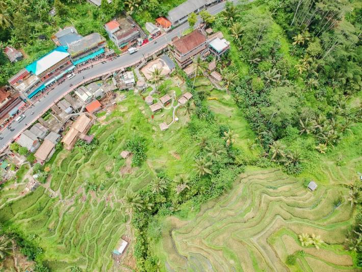 Rice Terrace Ubud - mapsandmuses; Best drones for travel