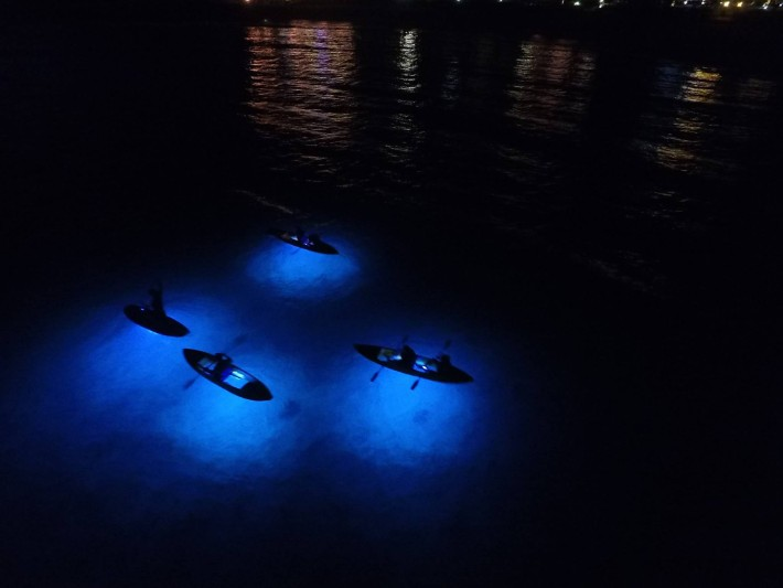Kayaking At Night, Top Things to Do in Dubai at Night