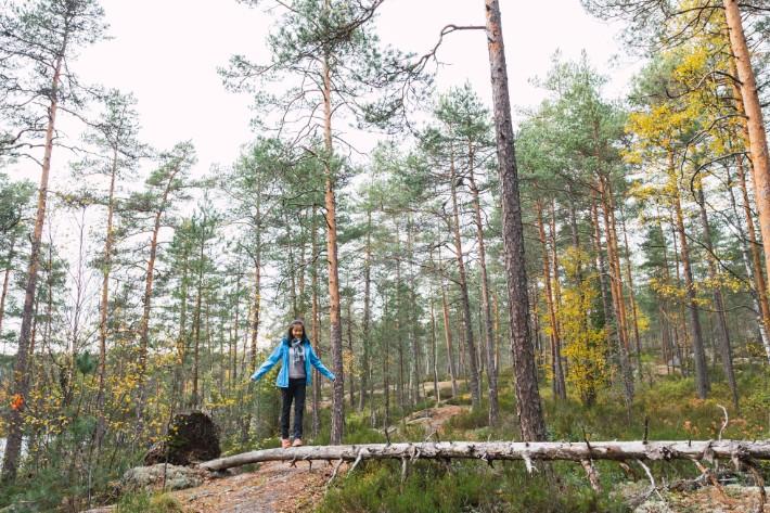 girl wood balance tree nuuksio national park, finland