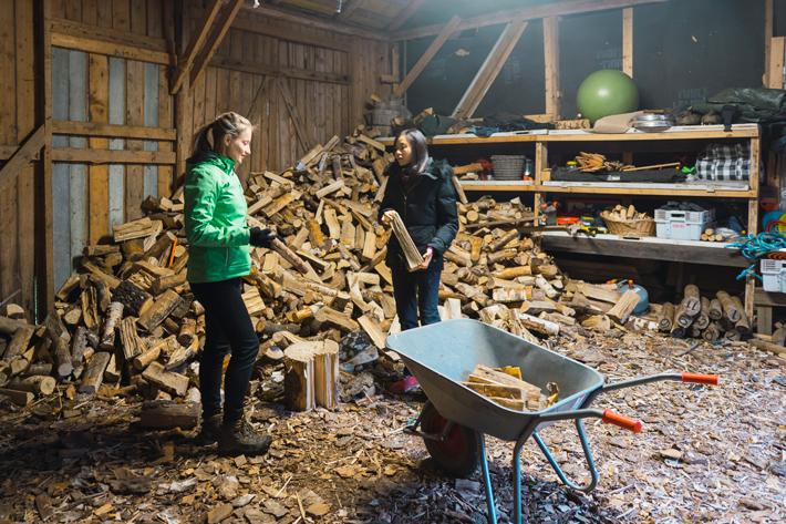 collecting wood, green window Nuuksio National Park
