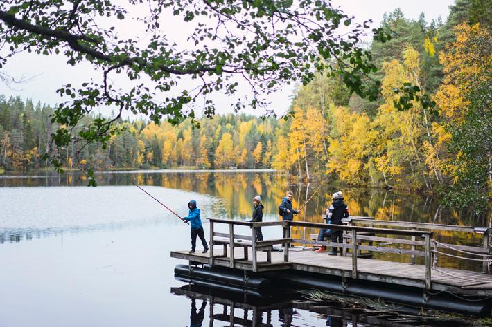 fishing lake, green window Nuuksio National Park