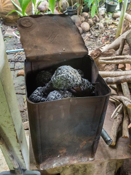 fruit charcoal, Day trips from Bangkok -Amphawa Floating Market, Maeklong Railway Market, Ban Bang Phlap