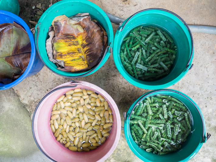 preserve fruit vegetables Day trips from Bangkok Amphawa Floating Market Maeklong Railway Market Ban Bang Phlap Bel Around The World
