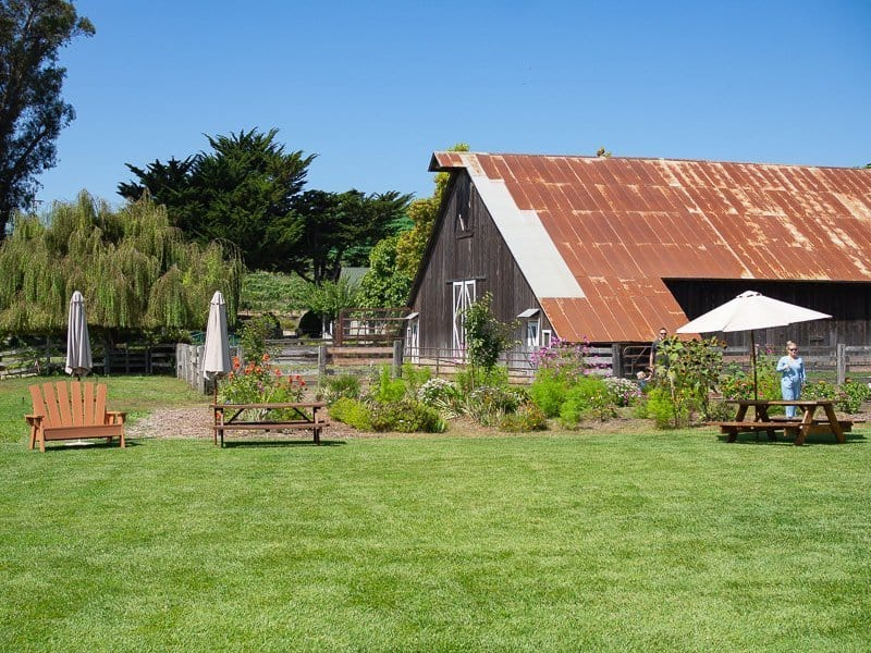 wine tasting, What-to-eat-in-Cambria-California-USA