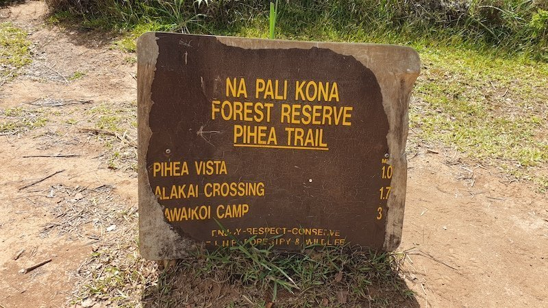 pihea trail start, best hikes in kauai, hawaii