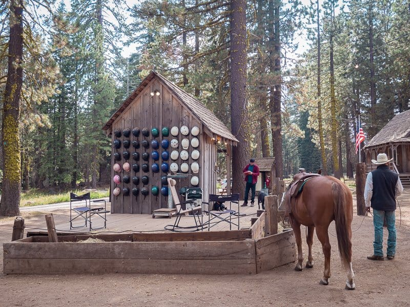 aspen meadow pack station, horse, things-to-do-around-Yosemite-National-Park-Tuolumne-California