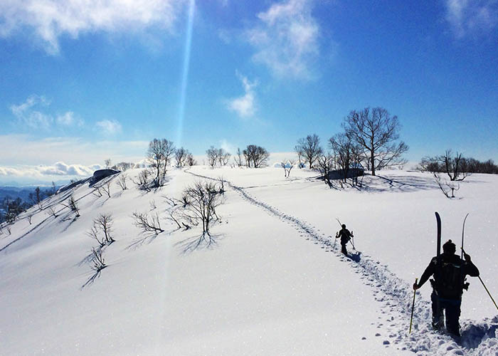 japan-backcountry, ski, snowboard, snowsports
