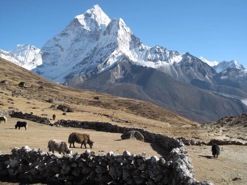 17 Best Treks In Nepal To Project | Bel Around The World